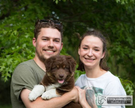 Penny - Red Tri Girl - Is with Sophia and Family in MN
