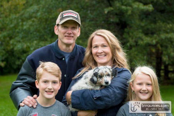 Poppy - Blue Merle Girl - Is with Hoffer family in MN
