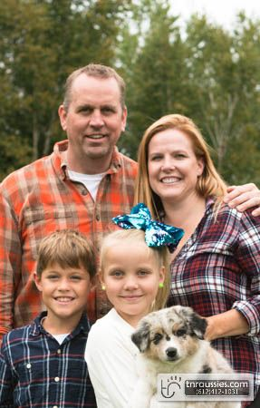 Tuuli - Blue Merle Girl - Is with Joel and family in MN