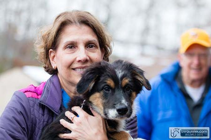 Simon - Black and White Tri Boy - Is with Patty Wheeler in MN