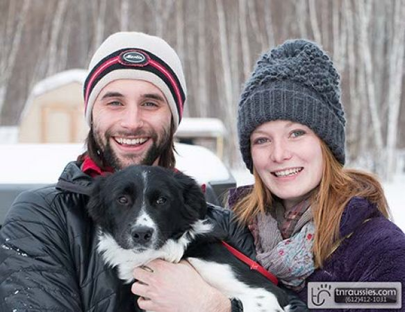 Hux-Black and White Boy - Is with Sean & Katie in MN
